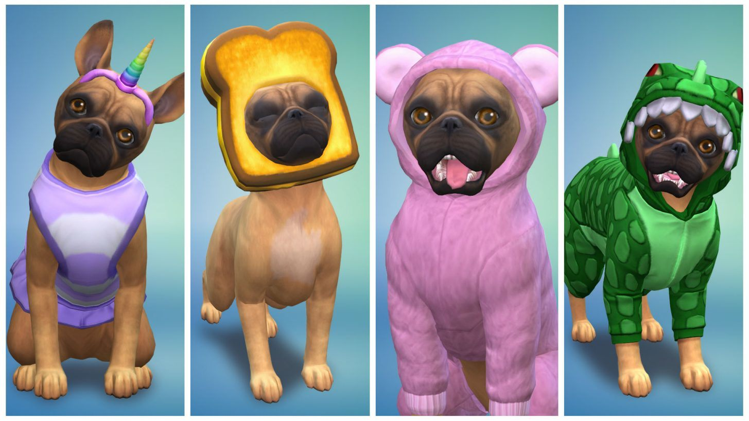 TS4 EP04 SPCAI SCREEN 01 001.jpg.adapt.crop16x9.1455w