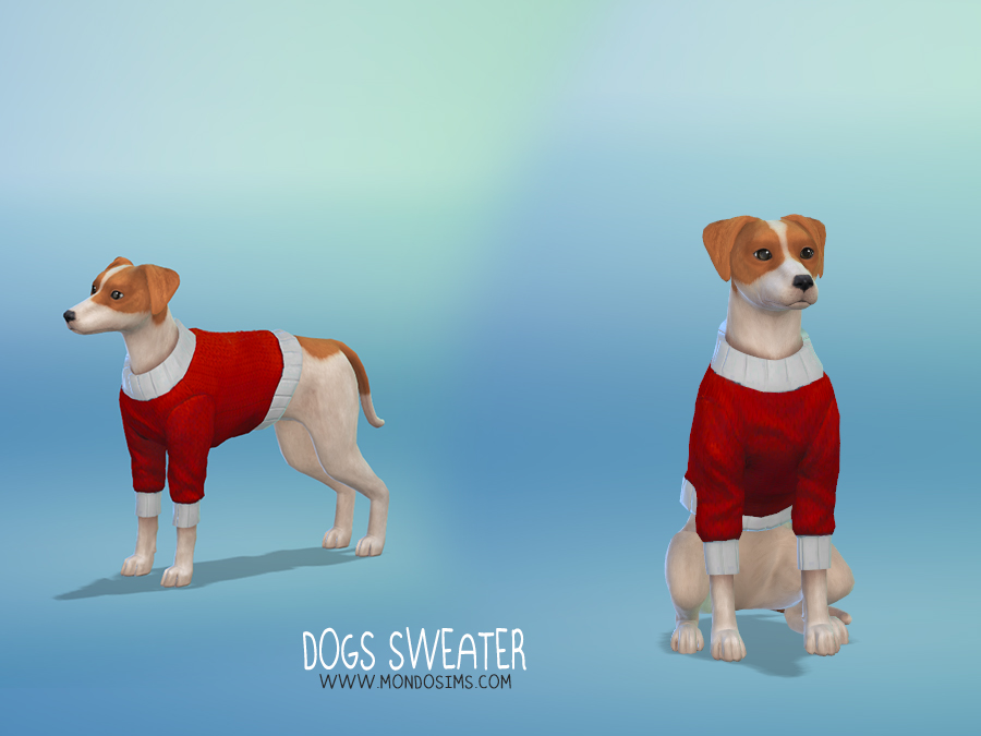 Dogs Sweater