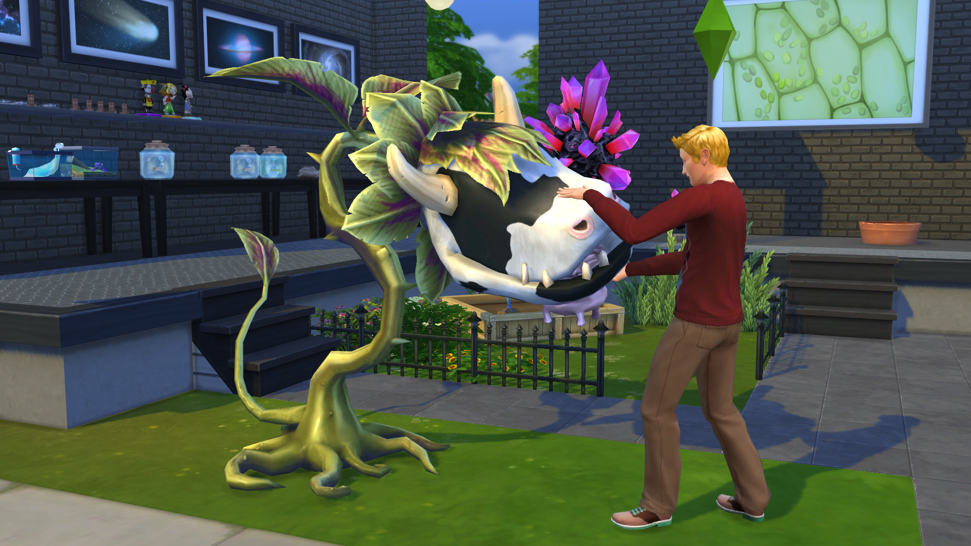 the sims 4 images