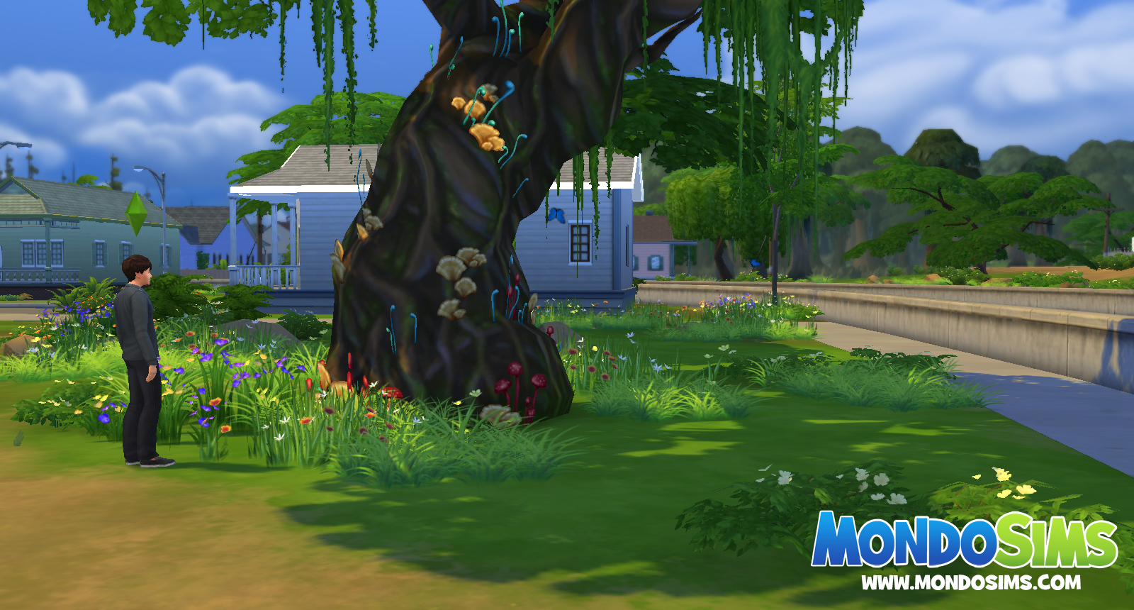 the sims 4 radura silvestre
